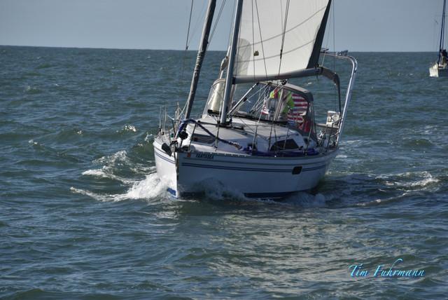 SARW-Shore-2021-04-23-024.jpg