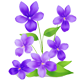 https://i.ibb.co/Px2p3VM/purple-flower.png