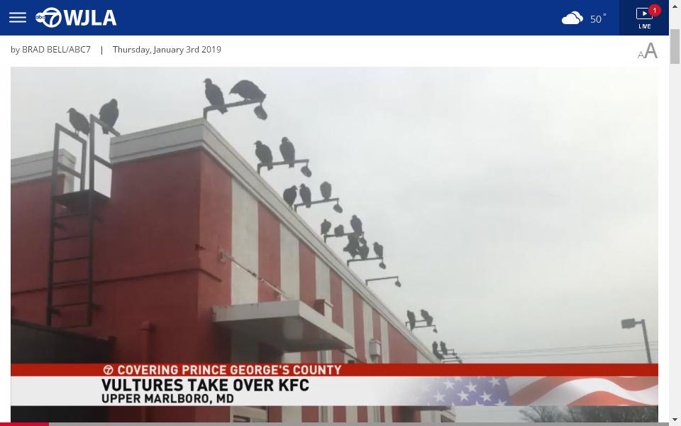 kfc-vulture.png