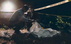 დეტექტივები The Detectives