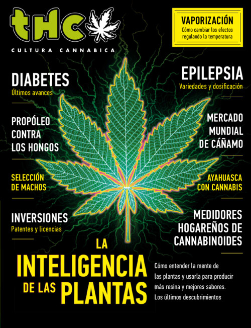 [Imagen: Revista-THC-febrero-2021.jpg]