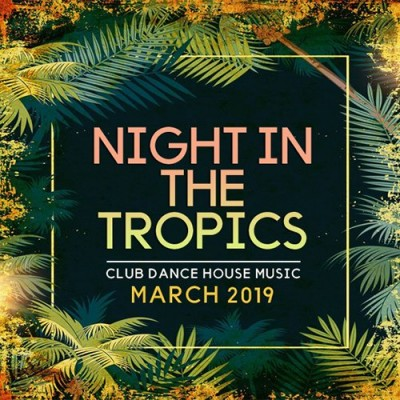 Night In The Tropics (2019) MP3 320 kbps