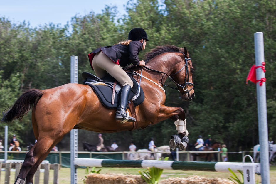 Four Ways To Be A Better Horseback Rider