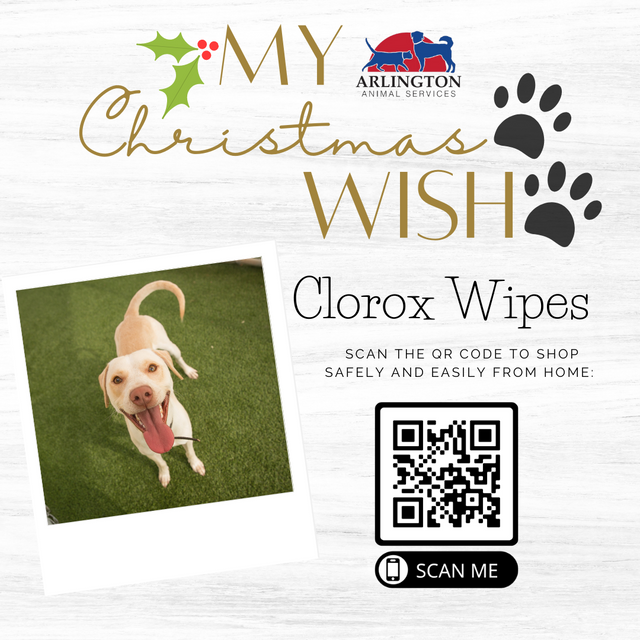 Animal-Services-2020-Angel-Tree-065.png