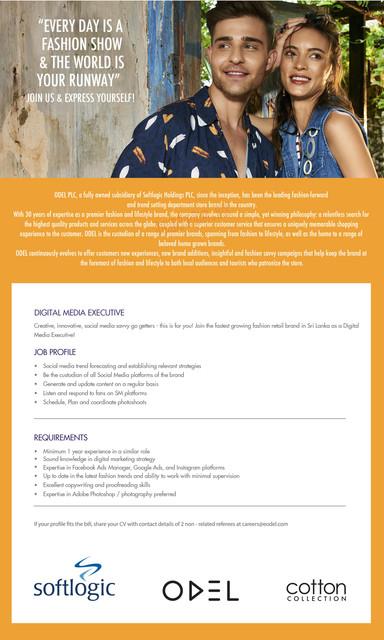 7961c-Digital-Media-Executive