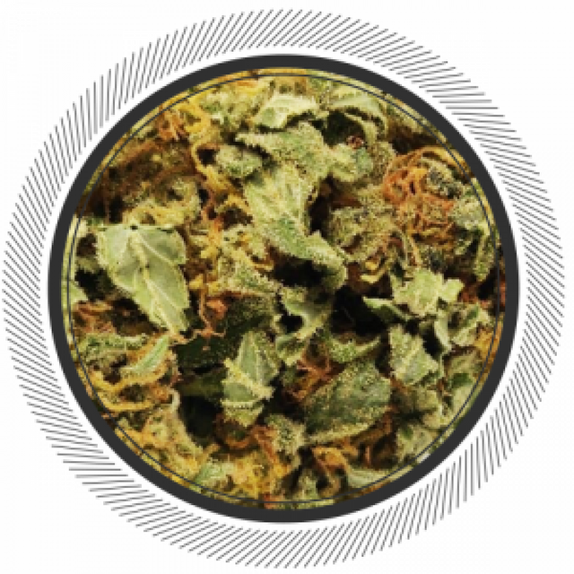 Cannabis edibles are one of the most popular ways to consume the herb. They offer a wide range of benefits and available in huge variety at online stores. Visit https://getwhitepalm.co/