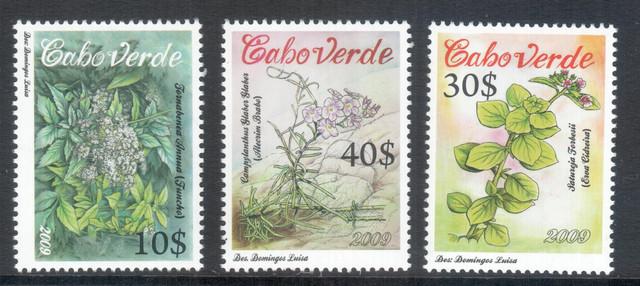 Cap Vert Fleurs