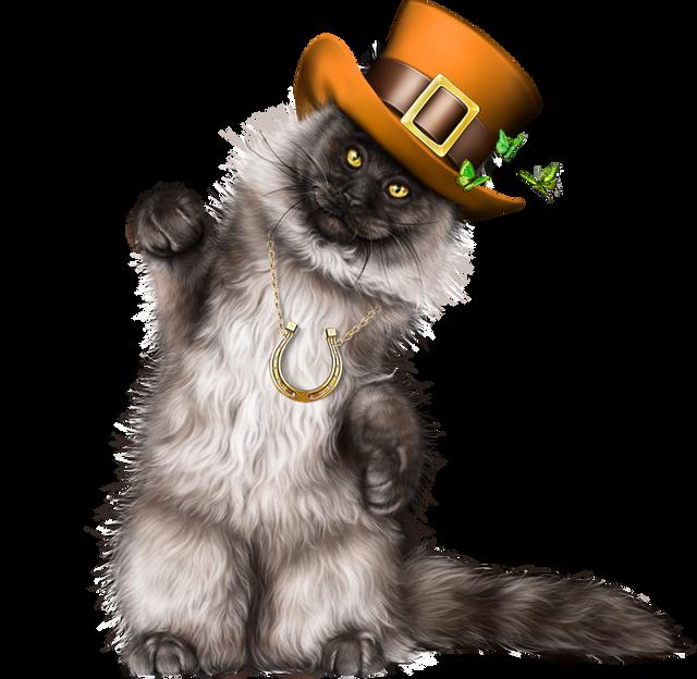 Leprechaun-Cat-With-Beer-37.png