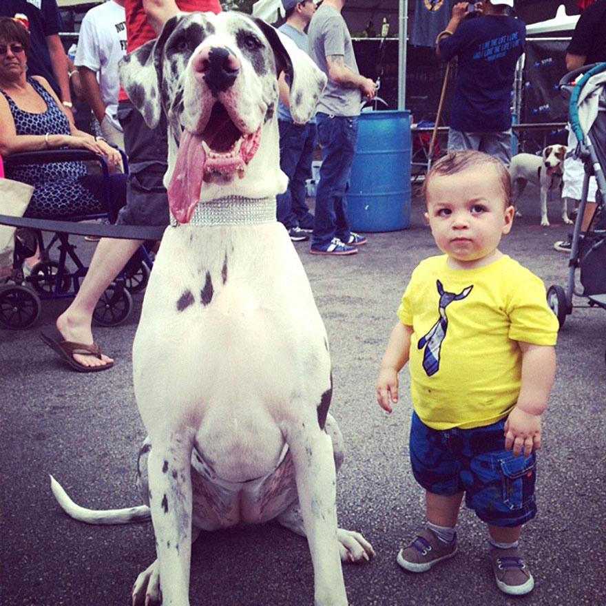 Когда собаки большие, а дети маленькие - 44 потрясающие фотографии - 28
