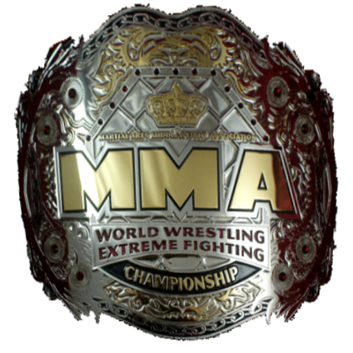 MMA-1.png