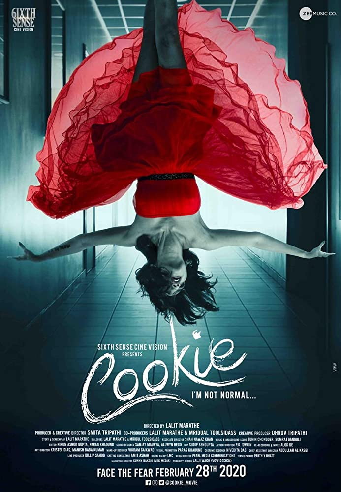 Cookie 2020 Hindi 720p HDRip 700MB | 300MB Download