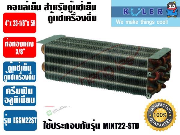 ESSM22-ST-1-copy