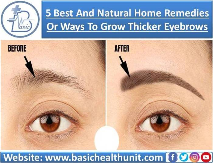 5 Best And Natural Ways Or Home Remedies To Grow Thicker Eyebrows