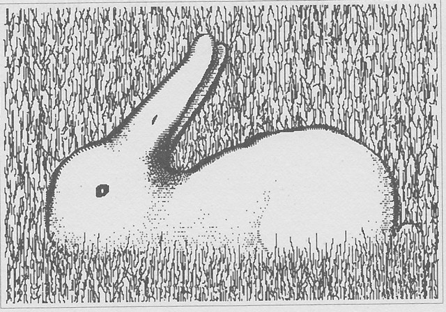 Real-life-version-of-the-duck-Rabbit-drawn-by-Roger-N-Shepard-in-Mind-Sights-1990