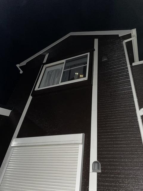 發光的貓眼睛 Image