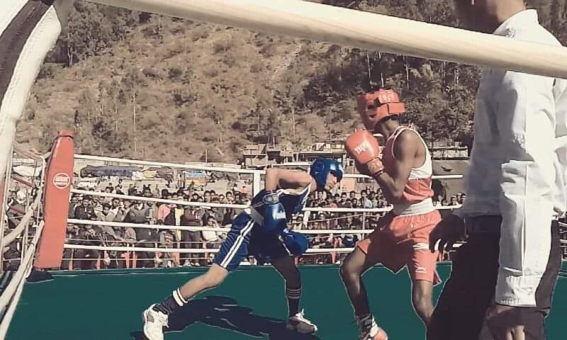 Vimal-Punera-Indiab-Boxer