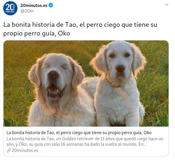Que pensais de los perros? - Página 14 Created-with-GIMP
