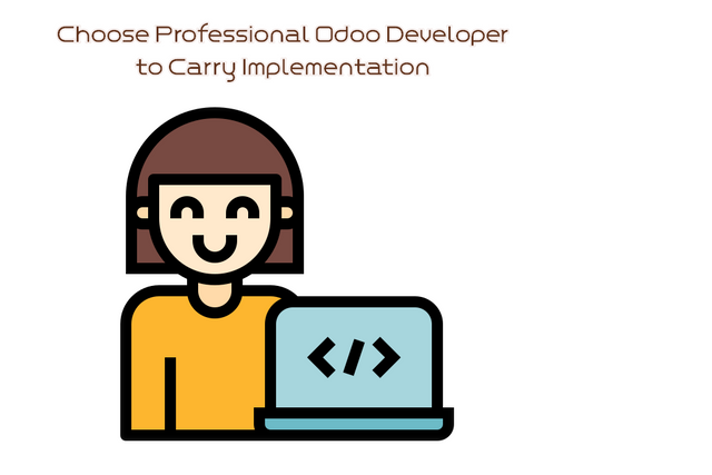 Is Freelancer a Better Choice or Professional Odoo App Developers to Carry Implementation?
