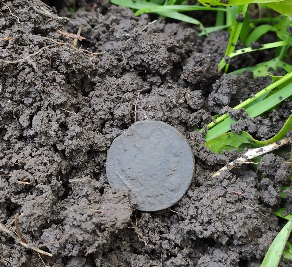 First coin found that day.