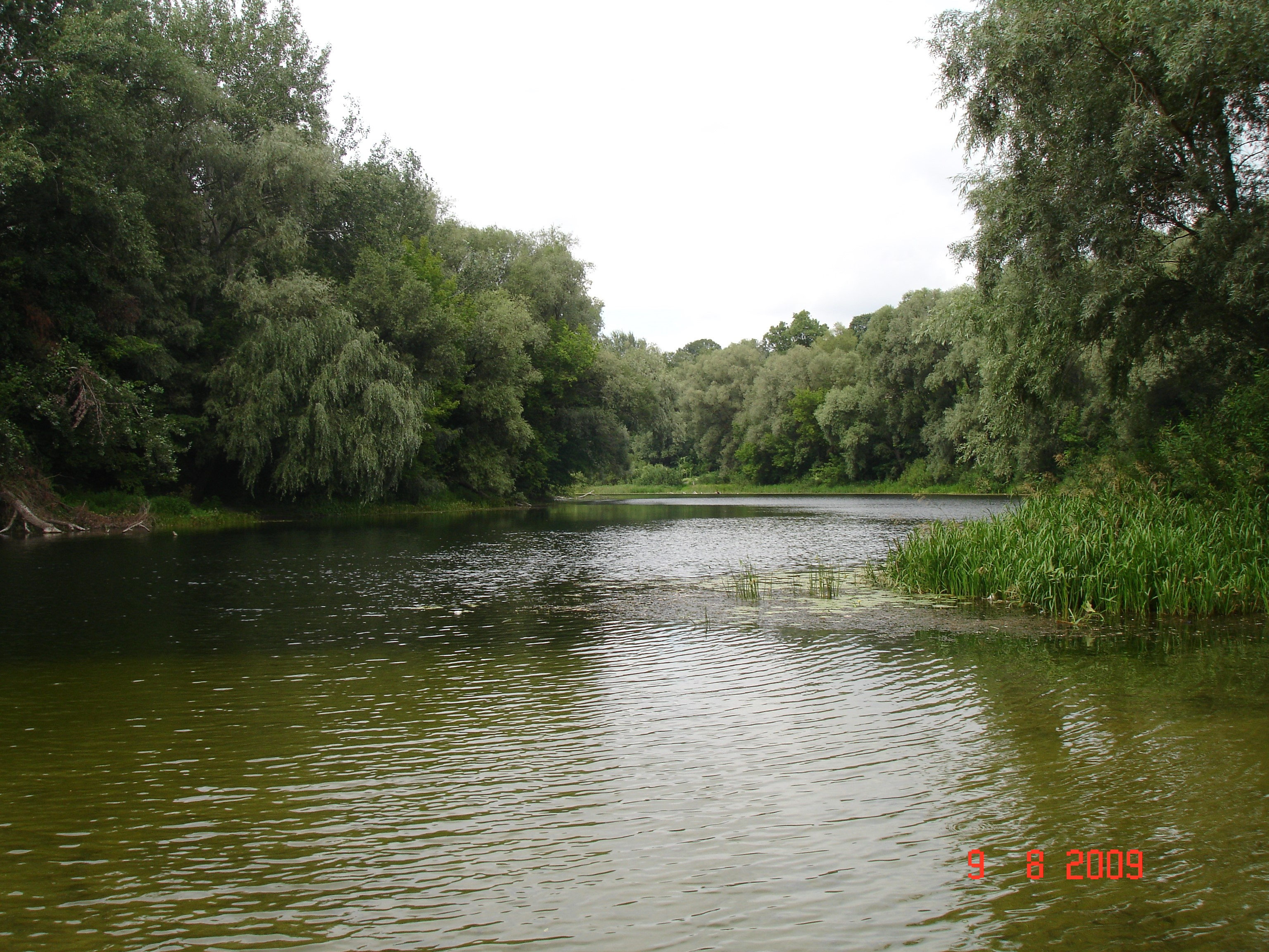 Так виглядає Сейм у Путивлі. Фото — Тетяна Чернецька (2009).