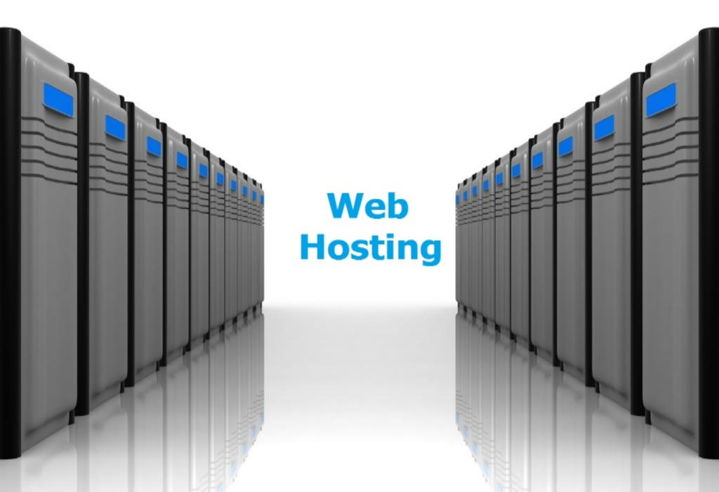 The Chronicles of Web Hosting Services