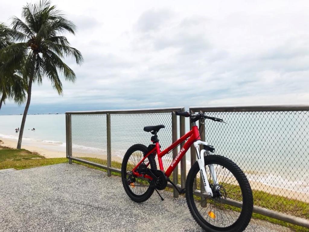 The Hybrid Bike Diaries