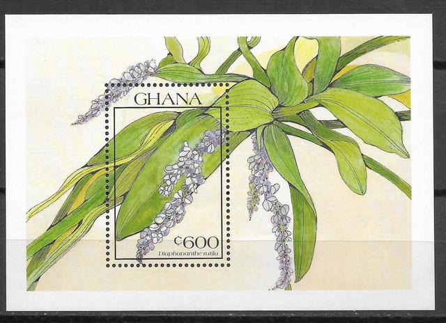 O Ghana 1448