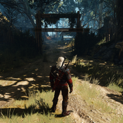 https://i.ibb.co/Qj2pxbP/witcher3-2020-06-14-13-54-30-543.png