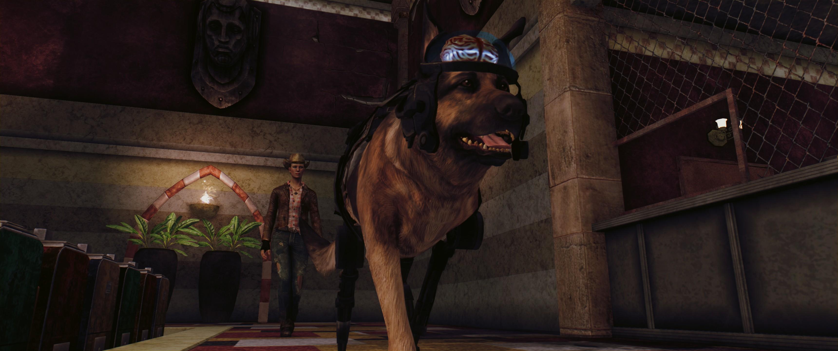 Fallout Screenshots XIV - Page 4 22380-screenshots-20190925191140-1