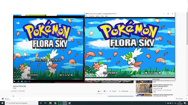 Pokemon-Flora-Sky