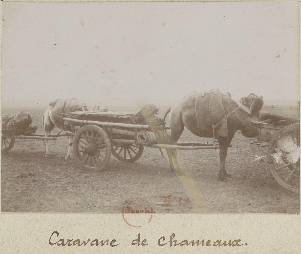 1897-3.jpg