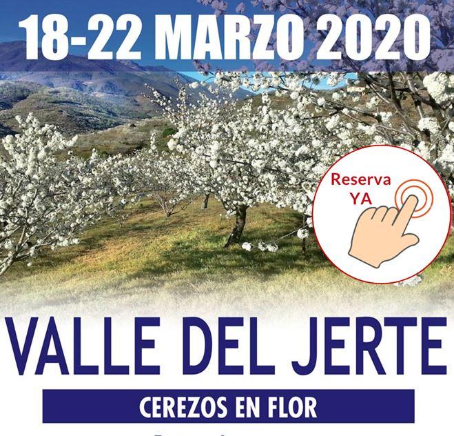 Cerezos en flor - Valle del Jerte