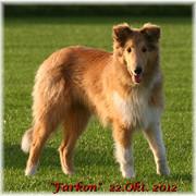 Farkon12-Okt-1215