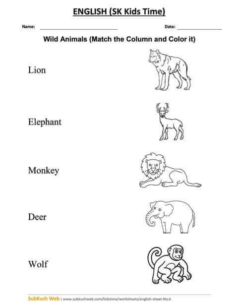 Wild Animals Worksheet - English Worksheets For Grade 1