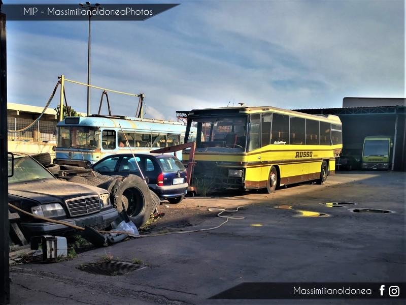 Auto Abbandonate - Pagina 13 Fiat-306-Viberti-Mercedes-0303-Padane-e-W124