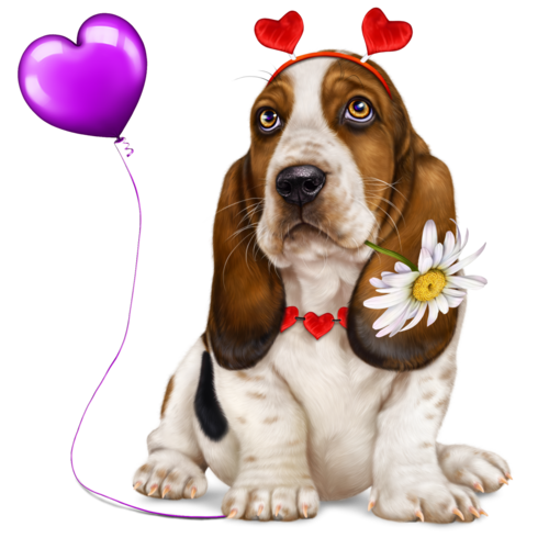 lonely-heart-basset-hound-5.png