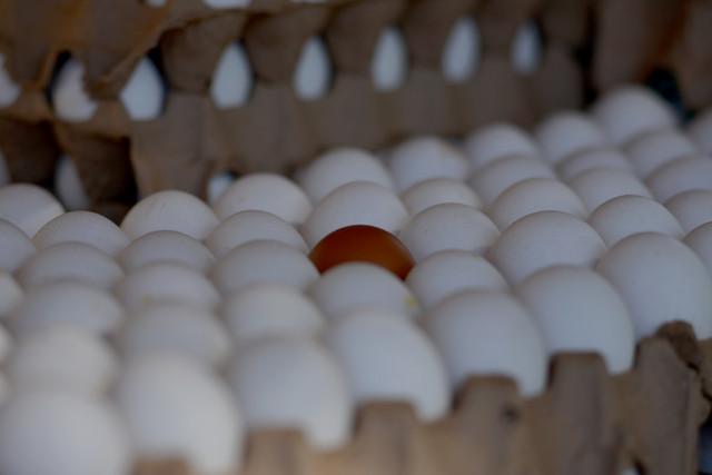huevo-marr-n.jpg