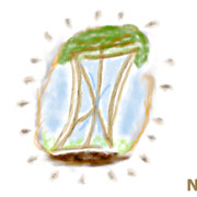 "BIG Jpeg Flag Of ""Nature Is The Answer"" NITA.ONE"