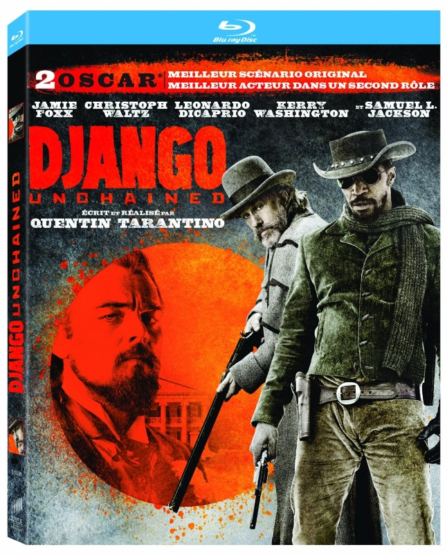 Django Unchained (2012) Dual Audio Hindi 480p Bluray x264 AAC 500MB ESub