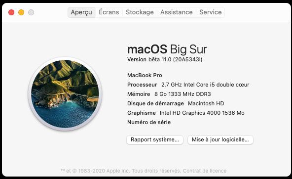 macOS Big Sur 11 / 11.1 / 11.2 / 11.3 (Beta) - Page 5 Capture-d-cran-le-2020-08-04-20-52-10