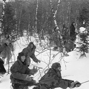 Dyatlov pass 1959 search 68