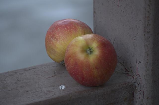 apple-20-1.jpg