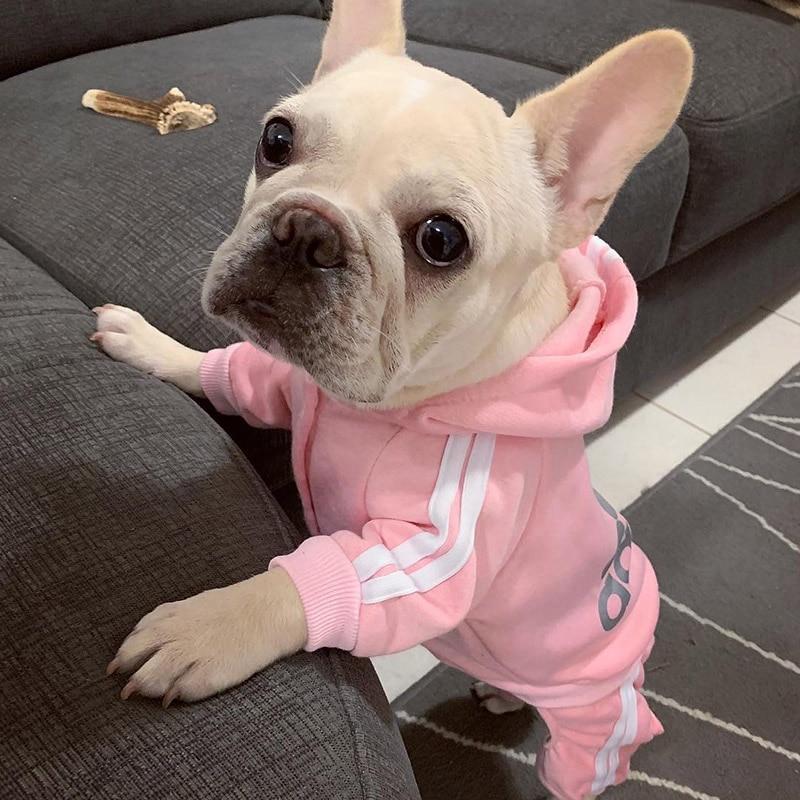 Stylish-Puppy-Dog-Jumpsuit-c14b