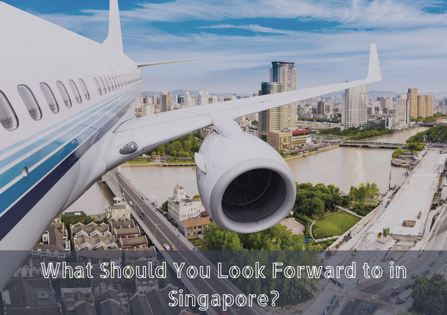 What-Should-You-Look-Forward-to-in-Singapore