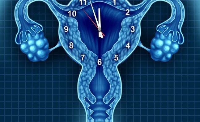 Fertility-Myths-Busted-2