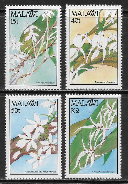 O Malawi S578