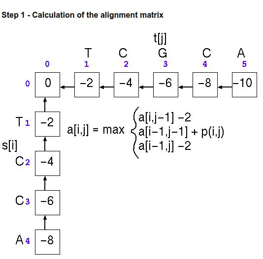 initialization-alignment-matrix