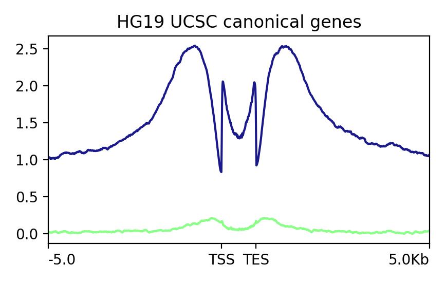 Sample-A-vs-Sample-B-gene-Profile-TSS-TES-5k-inc-Zero