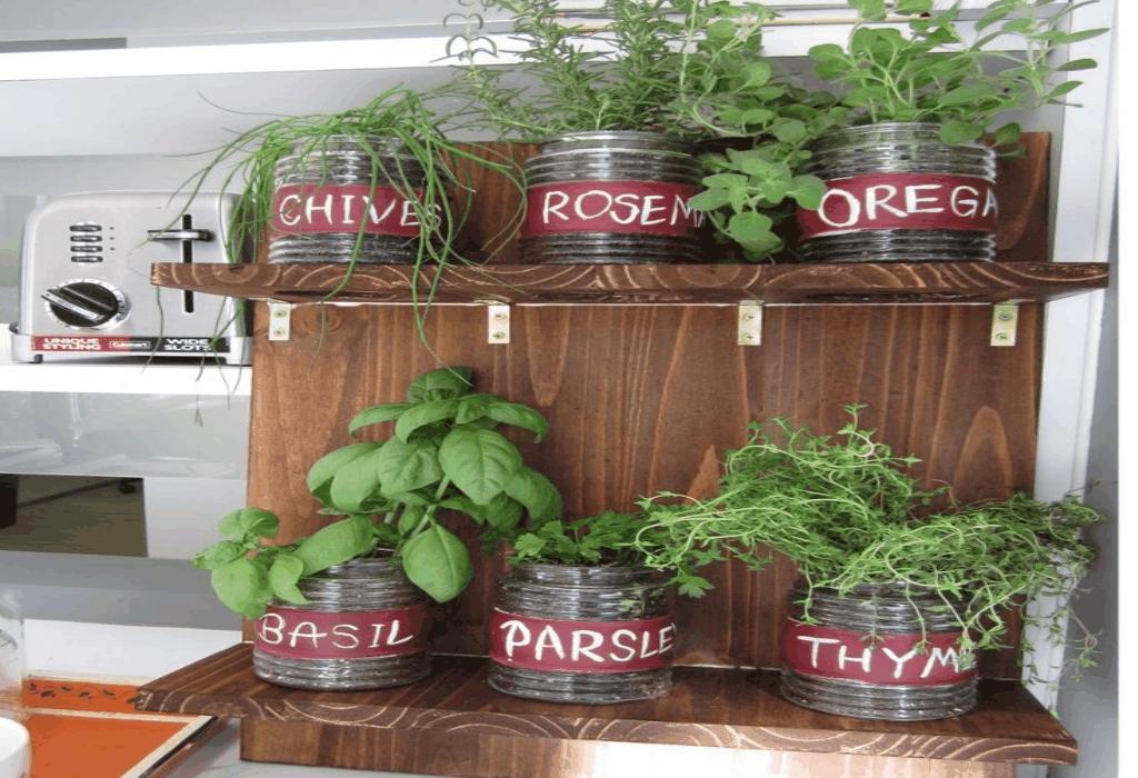 Gardening Tips Fair