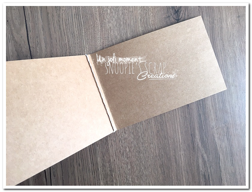 unjolimoment-com-Cartemarraine-Pauline-7